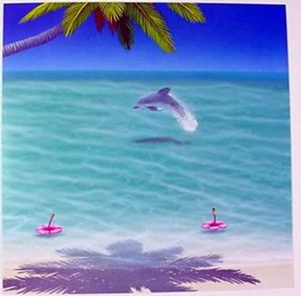 "Dolphin Birthday Card ""Barefoot Beach"" - BDS36318"