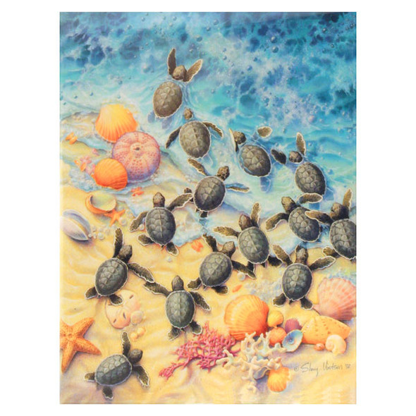 Sea Turtles Beach Note Cards Pack of 8