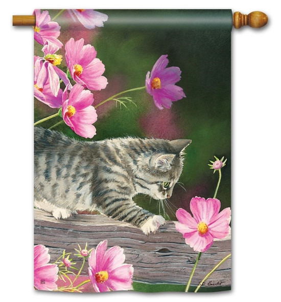Curious Kitty with Pink Blossoms Spring Themed