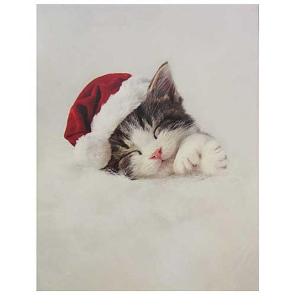 Sleeping Santa Cat Christmas Note Cards 12 cards N92298
