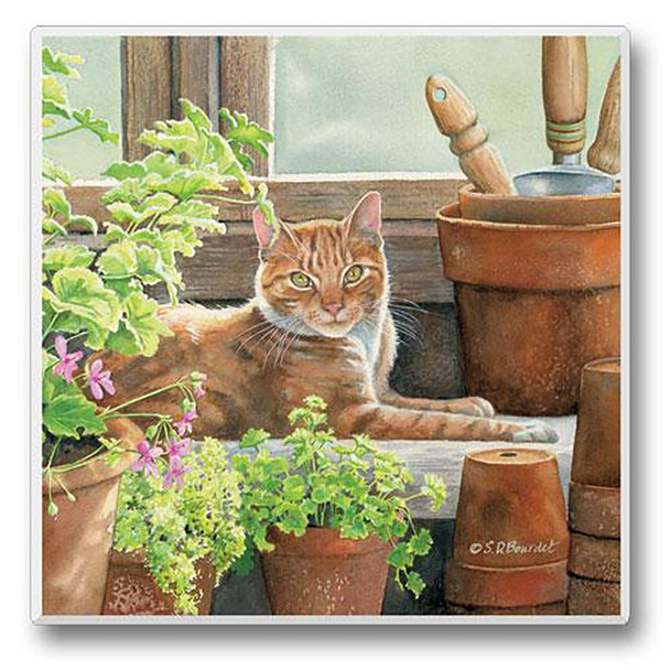 Cat on a Window - Single Cat Stone Coaster