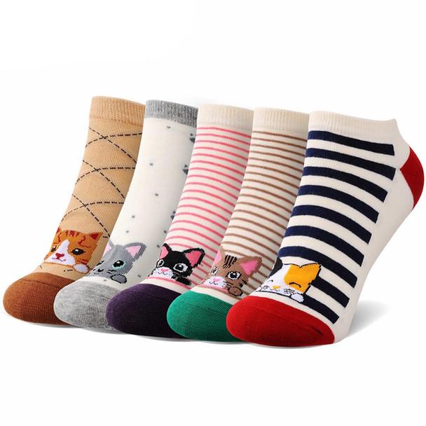 Women's Ankle Cat Socks - 5 Pack -  CC130
