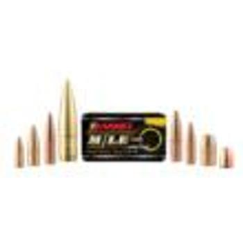 Barnes 380Acp 80Gr TAC XP 40/Box 30440