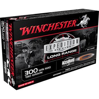 WINCHESTER EX BIG GAME LR 300 WIN 190GR ABLR 20/10