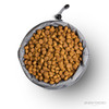 Drive Food Bowl - Large Top View (Open)