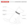 EzyDog Oxford Leather Collar Features