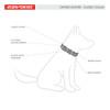 EzyDog Oxford Leather Collar Features