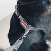 EzyDog Crosscheck Harness Checking Feature