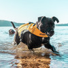 DFD X2 Boost Dog Life Jacket
