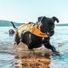 DFD X2 Boost Dog Life Jacket