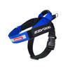 EzyDog Express Harness - Blue