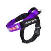 EzyDog Express Harness - Purple