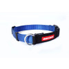 Blue - EzyDog Checkmate Collars