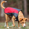 EzyDog Element Jacket - Large