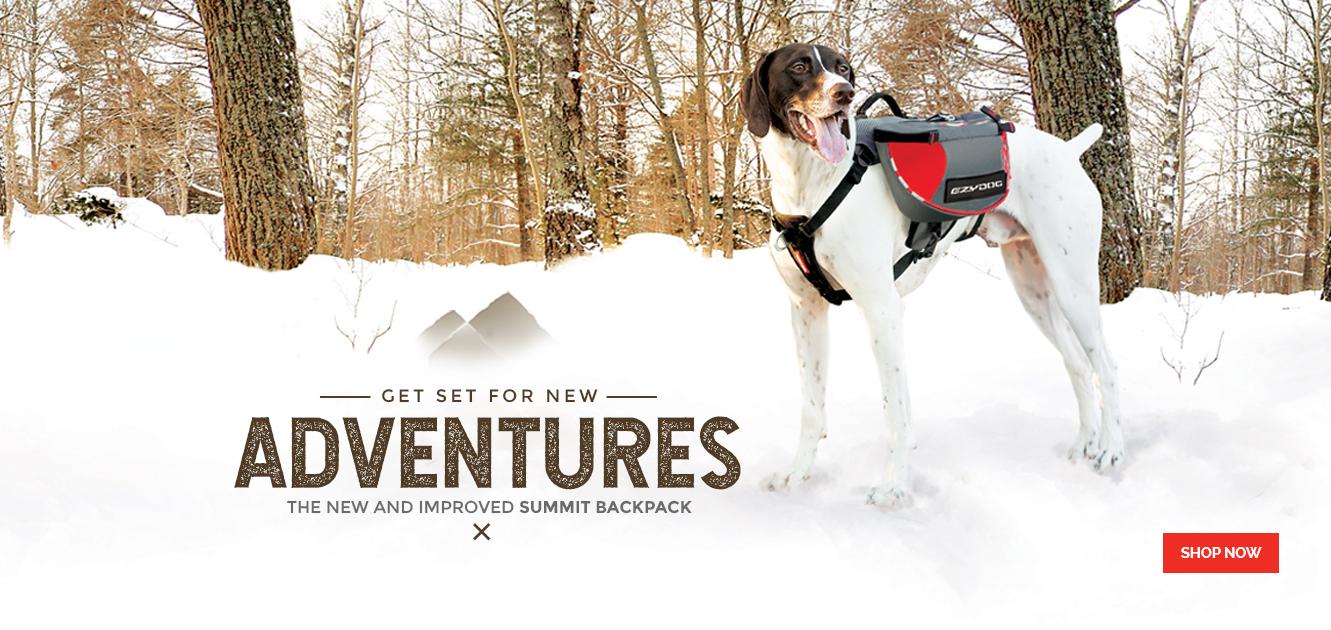 Summit Dog Backpack