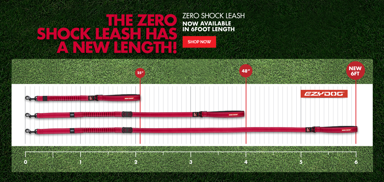 6' Zero Shock Leash