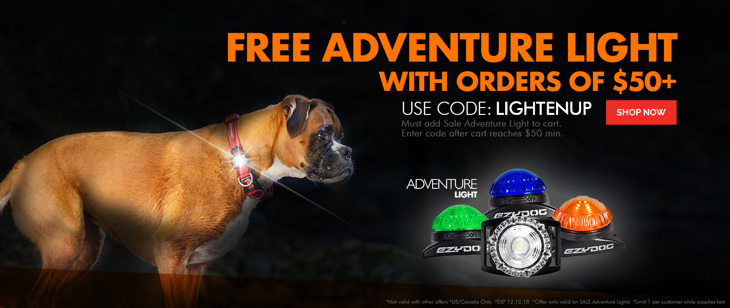 Free Adventure Light with order of $50 or more