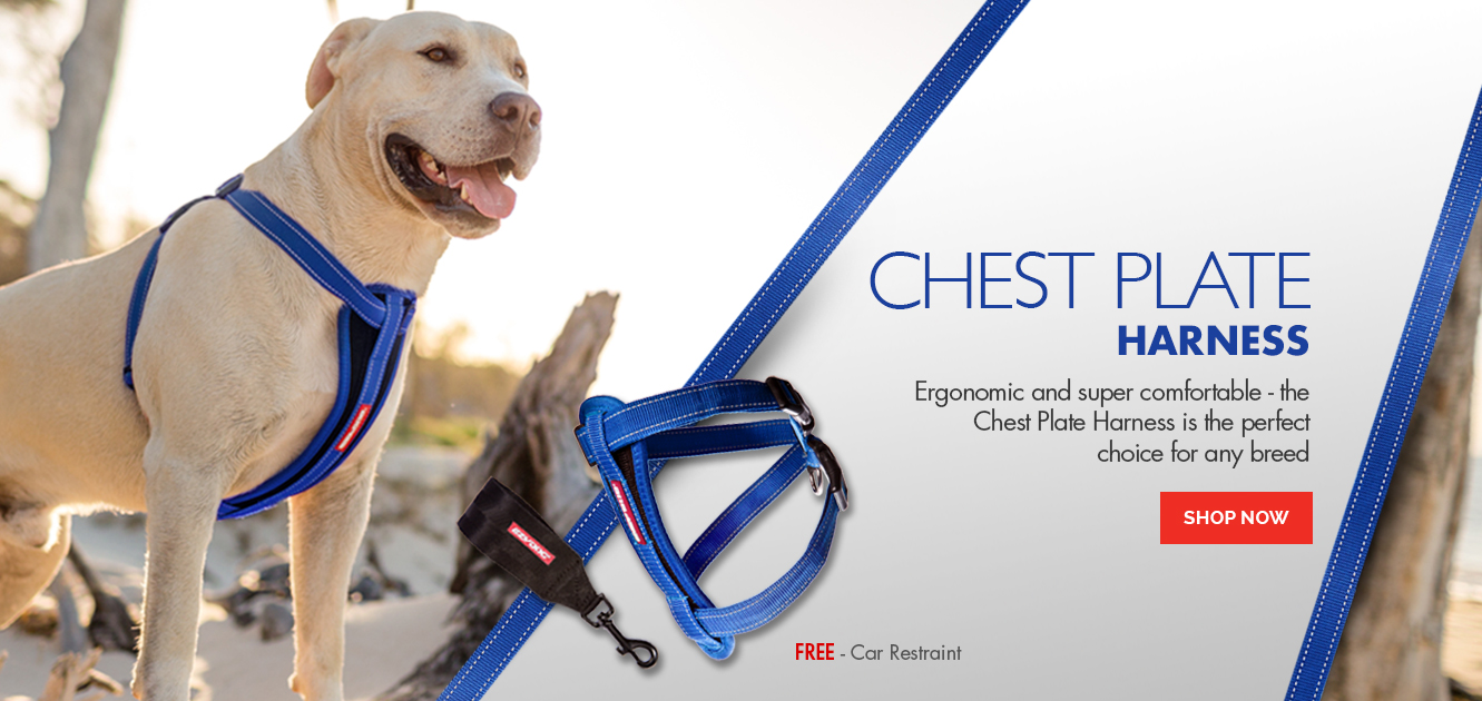 Chest Plate Harness - Ergonomic and super secure dog harness
