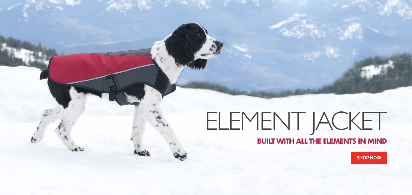 Element Jacket - Ready For Winter