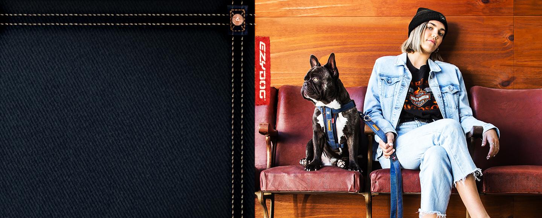 Denim Dog Accessories
