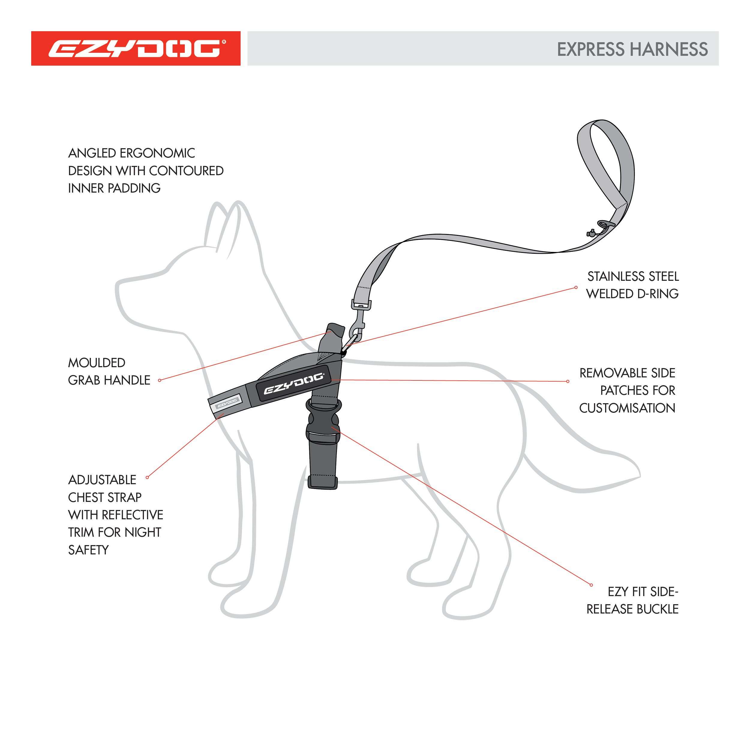 experss-harness-dog-diagram-square.jpg