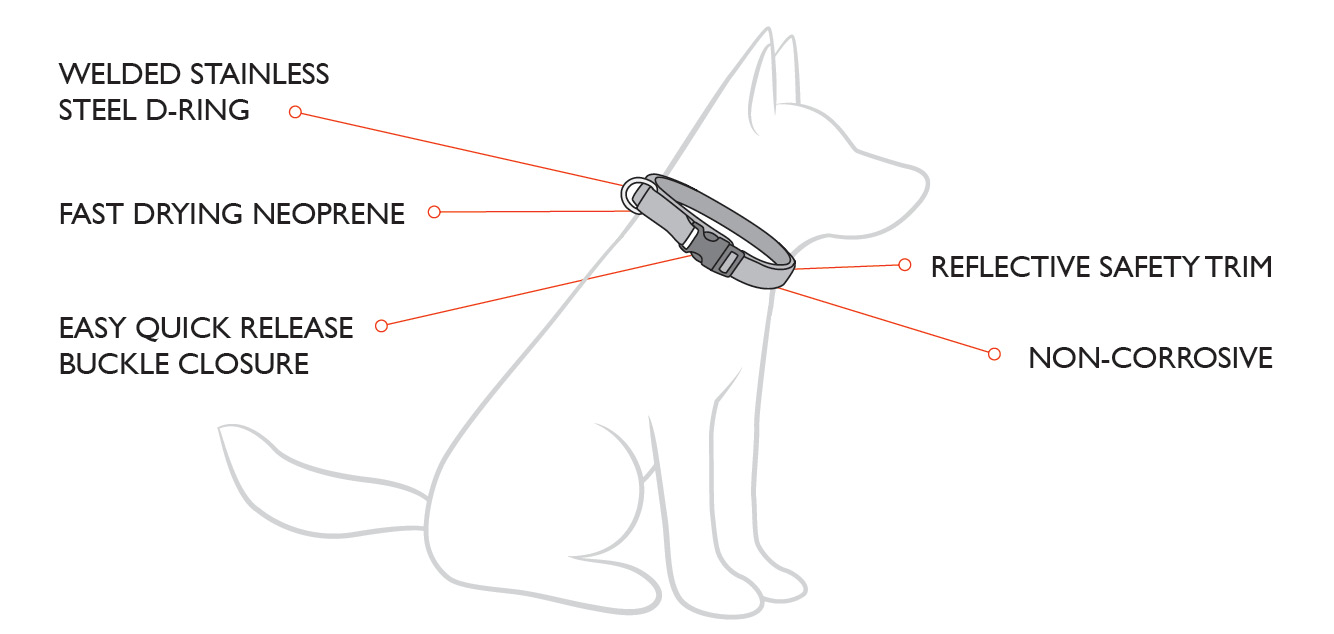 neo-collar-diagram