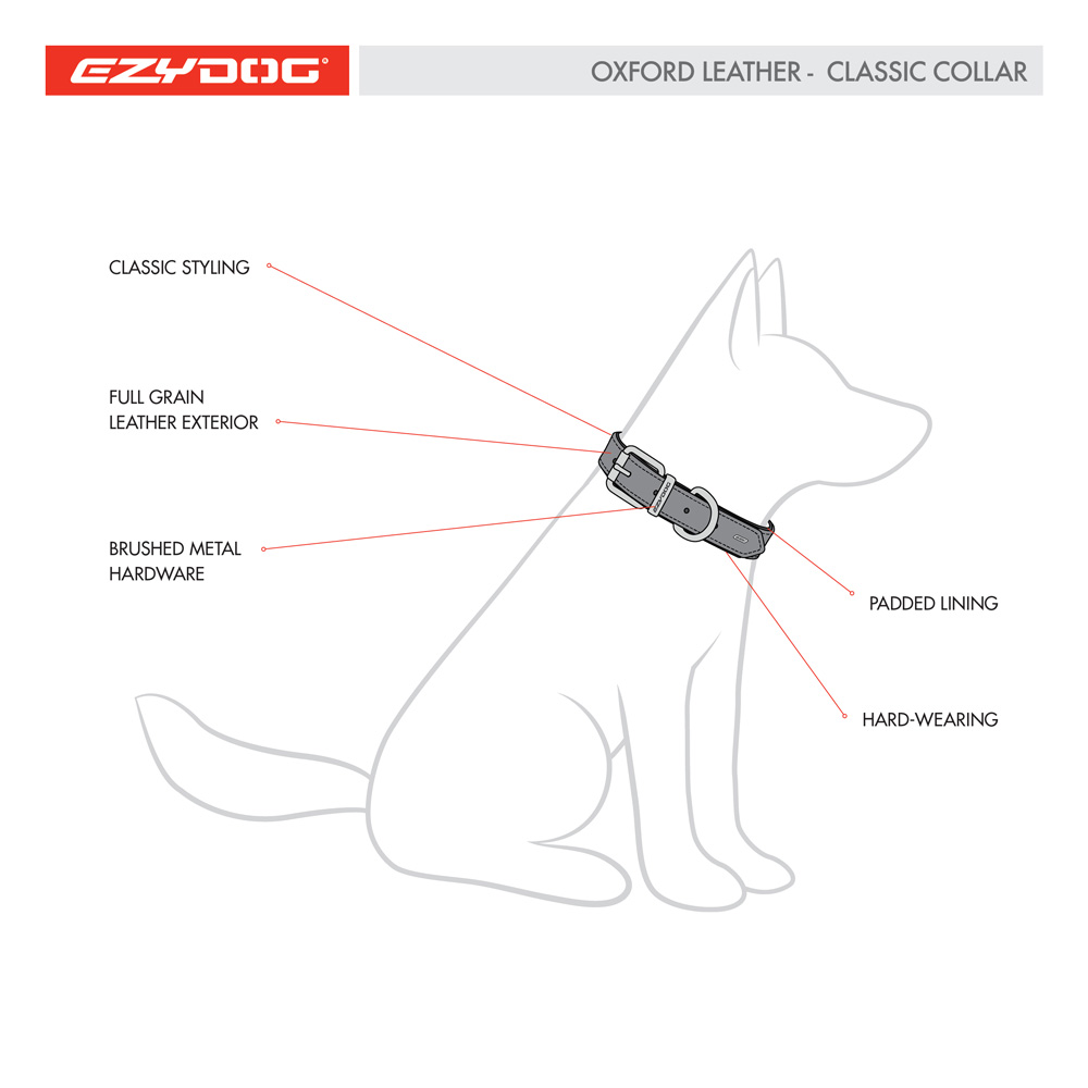 Oxford Leather Collar Features Diagram