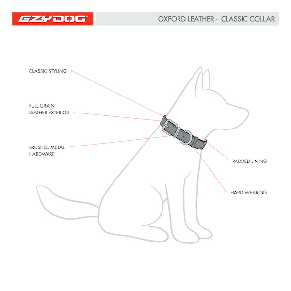 oxford leather collar features diagram 2020