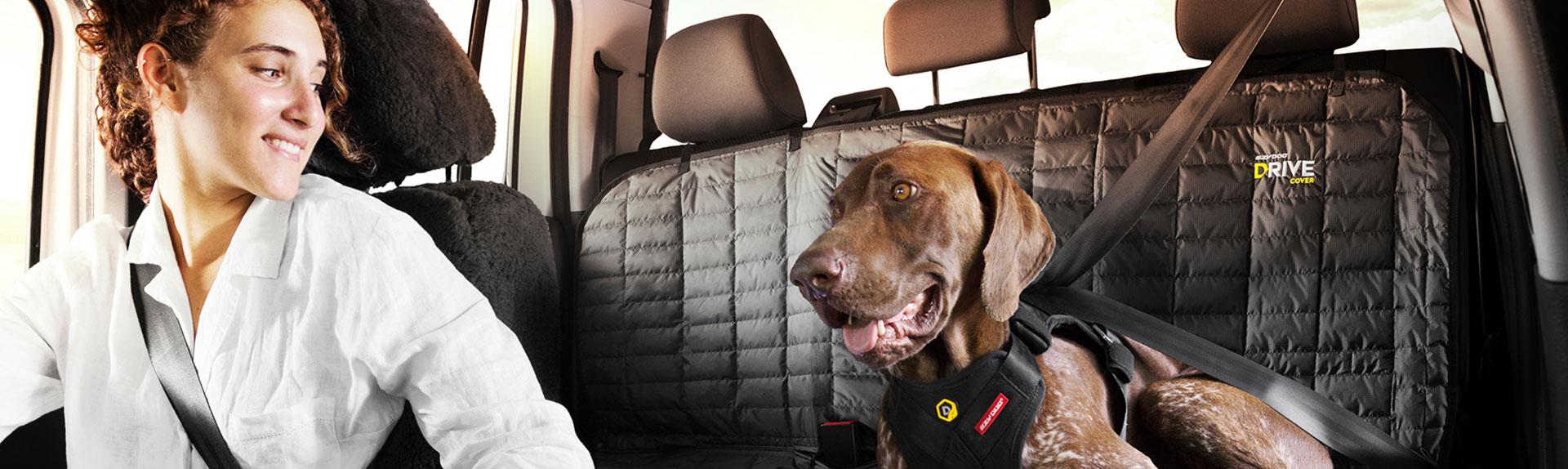 Dog Travel Gear | Dog Car Travel Accessories | EzyDog