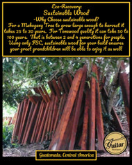 Eco-Recovery.  The Story of our genuine Honduran Mahogany.  Where do we start