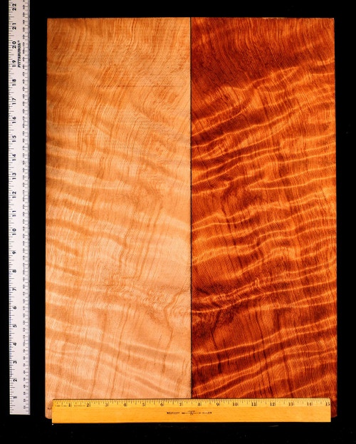 5a Curly Redwood Drop Top