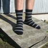 Lothlorian Merino - Possum Accent Stripe Sock
