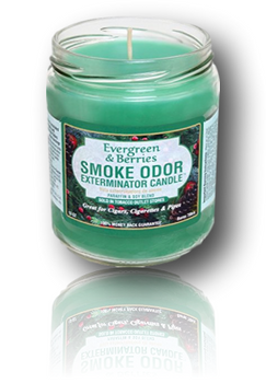 Smoke Odor Exterminator Candle - 13oz Evergreen & Berries.