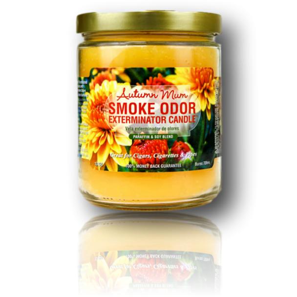 Odor Exterminator Candle - 13oz Size - Autumn Mum Scent.