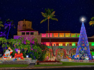 Tis the Season to Be Jolly: Honolulu City Lights