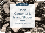 John Carpenter and Island Slipper- A Story about Success