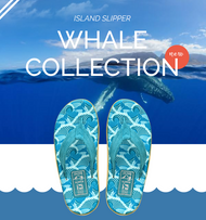 Island Slipper x Pacific Whale Foundation Collection: A Fashionable Way to Give Back to the World
