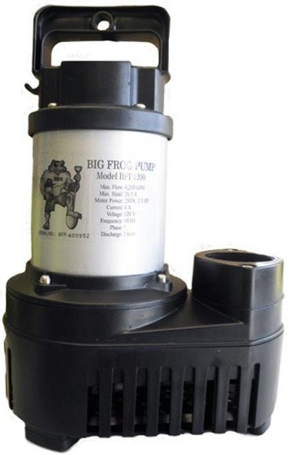 Anjon Big Frog Eco-Drive Pumps