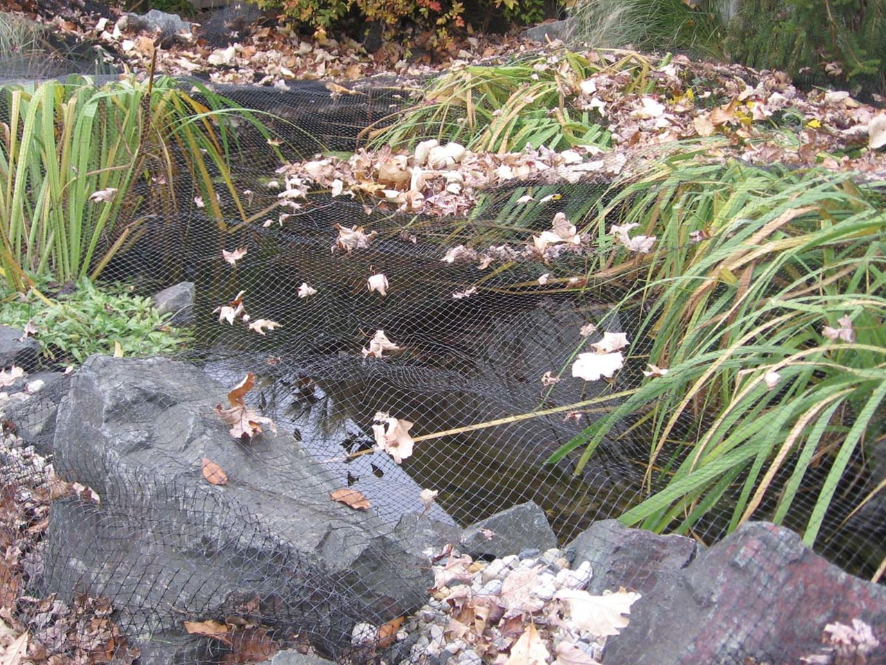 KW Pond Netting - TIPS