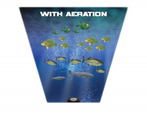 Year Long Aeration for Your Pond