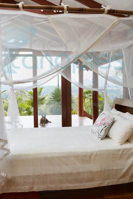 Bed Canopy suspended from ceiling on bamboo frame