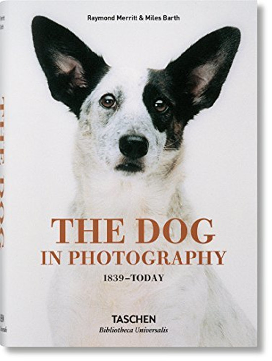 The Dog in Photography: 1839-today