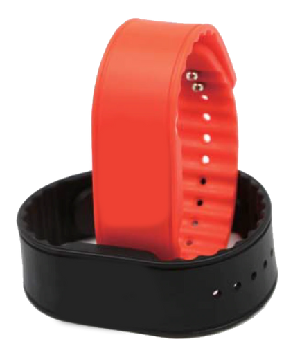 RFID MIFARE Wristband, RapidBAND 13.56MHz, ISO 14443A