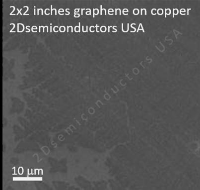 graphene-sem-copper-ii.png