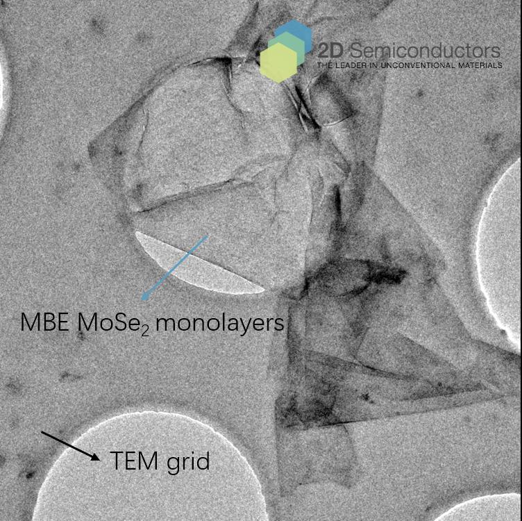 mbe-mose2-tem-grid.png