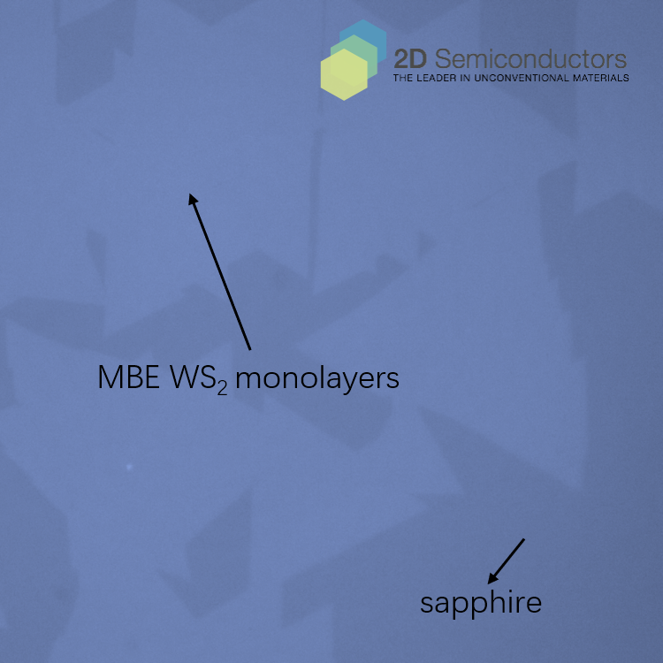 mbe-ws2-optical-images.png