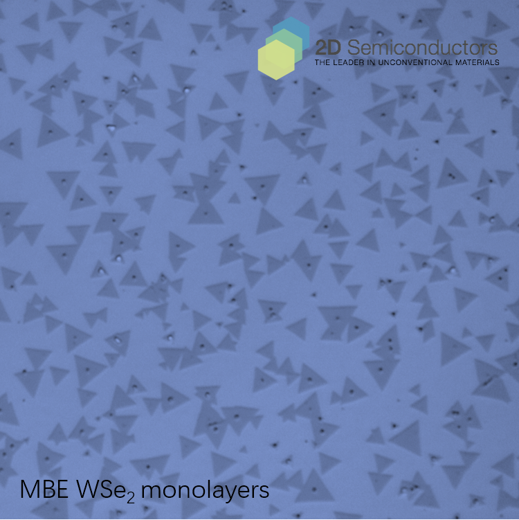 mbe-wse2-optical-image.png