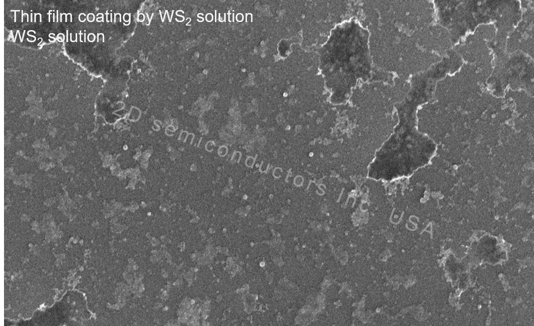 SEM images from 2D WS2 solutions