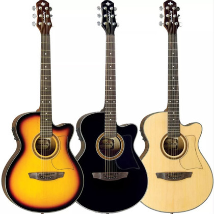 Auditorium Body Acoustic Guitar with Preamp & Tuner  AW-50C