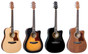 Dreadnought Body Acoustic Guitar w/ Preamp & Tuner  SD-20C
